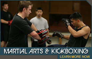 Adult Martial Arts Programs