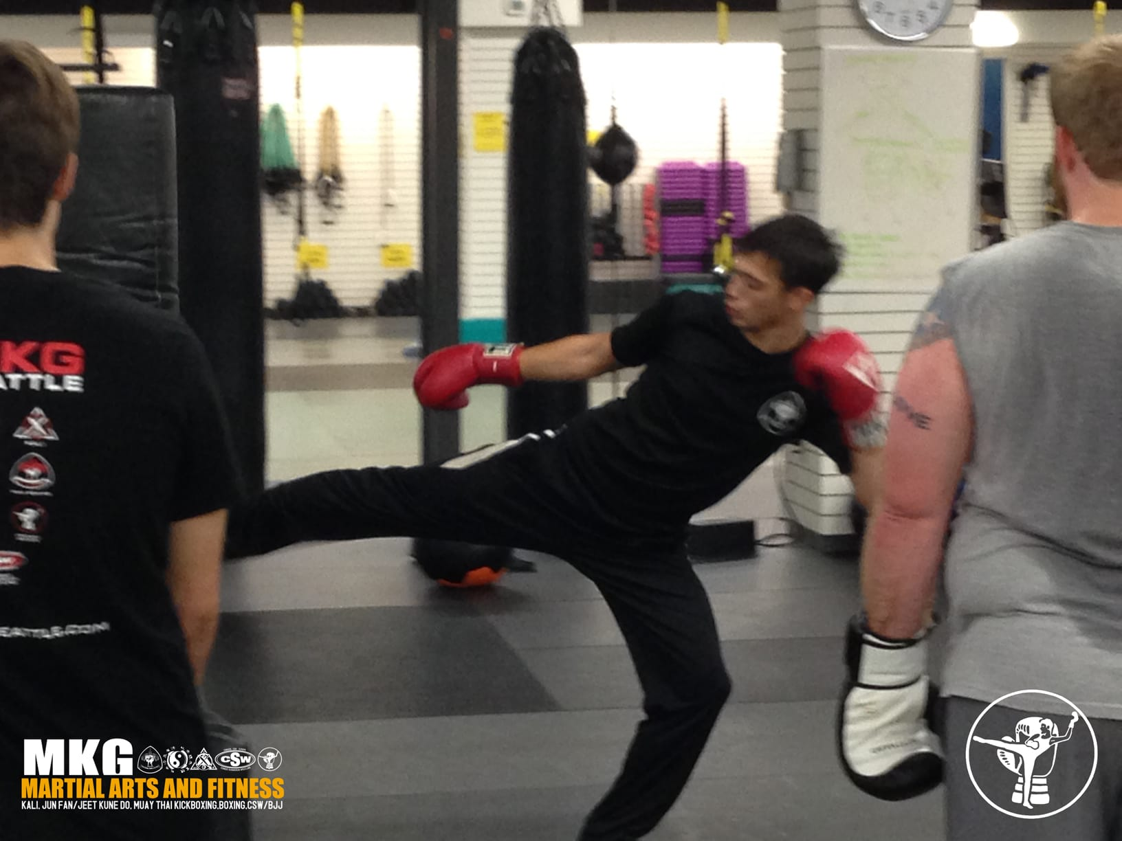 private lessons in savate