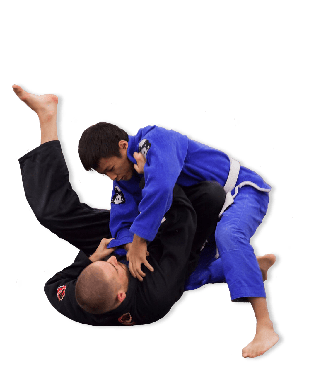 bjj classes brazilian jiu-jitsu seattle